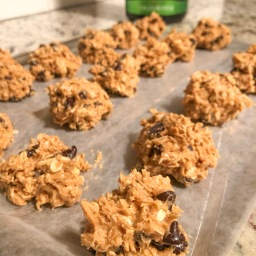 Protein Peanut Butter Oat Ball Recipe